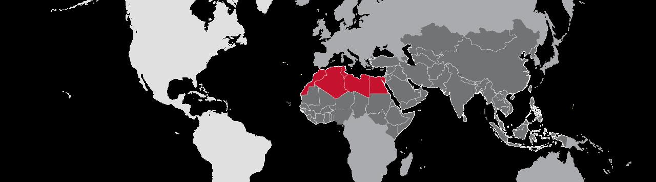 Partners International - International Christian Ministry Reaching