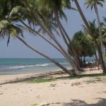 SriLanka AfterTsunamiReliefFeb200503