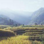 Nepal hills