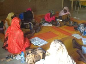 TDCC-Bridges for women training in Bitkine Chad