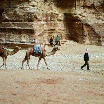Jordan CamelAtPetra2 Jan08 e14170276856091