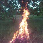The idols in flames