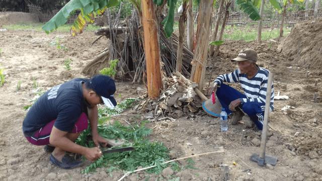 Finding Jesus Through Organic Fertilizer