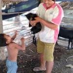 MK CBFH Oct 2020 goat update 1